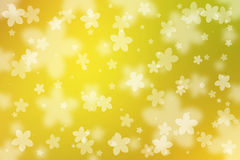 Flowers abstract background Stock Photos