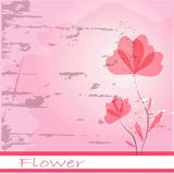 Flowers. Abstract colorful background .with pink floral Stock Photography