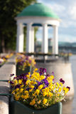 Flowers against arbor Stock Photography