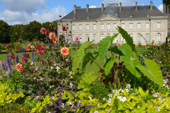 Flowers against the Fine Arts Museum of Limoges Stock Images