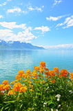 Flowers against mountains and lake Geneva from the Embankment in Montreux Stock Photos