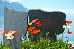Flowers against mountains and lake Geneva. From the Embankment in Montreux. Switzerland Stock Photography