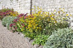 Flowers against stone wall Stock Photo
