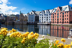 Flowers of Alesund Stock Images