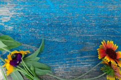 Flowers along the perimeter of a wooden, painted blue board with cracks Royalty Free Stock Photos