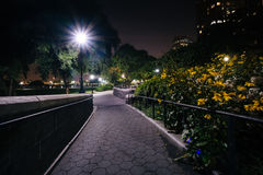 Flowers along a walkway at night, at the Hudson River Park, in B Stock Photography
