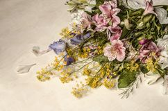 Flowers of Alstroemeria with purple iris and yellow flowers of  wild radish lies at an angle Royalty Free Stock Image