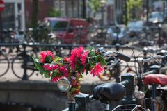 Flowers in Amsterdam Stock Image