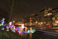 Flowers, Amsterdam lights festival 2014 Royalty Free Stock Images