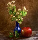 Flowers and apple Stock Photography