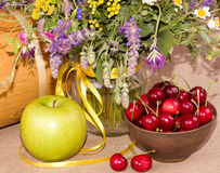 Flowers, apple and cherry Stock Photos