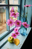 Flowers, apple and leaf on the old windowsill. Flowers, apple and autumn leaf on the old windowsill Royalty Free Stock Photography