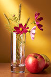Flowers and apples still life royalty free stock images