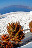 Flowers  in architecture    europe cyclades santorini old town Stock Photo