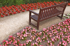 Flowers around a Bench Royalty Free Stock Photography