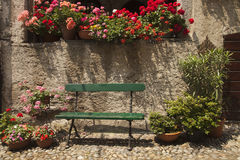 Bench with colourful geranium flower pots Royalty Free Stock Photo