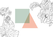 Flowers around geometric shapes. Banana, ficus, monstera rose rosehip garden flower Stock Photo