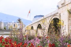 Flowers around Vardar River and the Ottoman Stone Bridge, Skopje. The Macedonian capital Royalty Free Stock Images