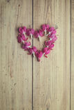 Flowers arranged in a heart shape Royalty Free Stock Photography