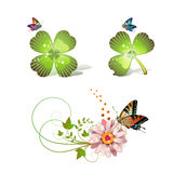 Flowers arrangement. And clover with butterflies Stock Photo