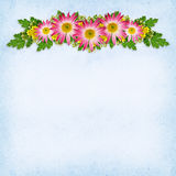 Flowers arrangement Royalty Free Stock Photography