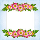 Flowers arrangement and a card Royalty Free Stock Photos