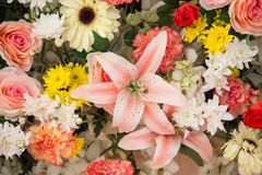 Flowers arrangement Royalty Free Stock Image