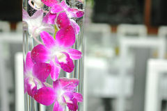 Flowers arrangement. In water bowl Royalty Free Stock Images
