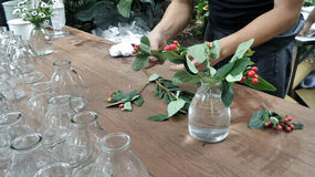 Flowers arranging on wooden table Royalty Free Stock Photos