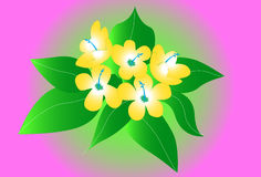 Flowers art Royalty Free Stock Images