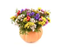 Flowers as autumn decoration in pumpkin vase. Stock Images