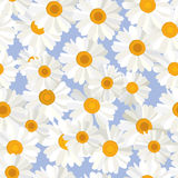 Flowers Backdrop Stock Images