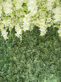 Flowers backdrop. In wedding ceremony Stock Photos