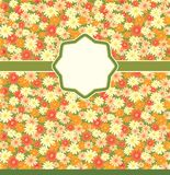 Flowers background. Stock Images