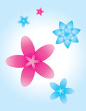 Flowers background. Abstract flowers  background illustration Stock Photography