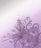 Flowers background. Flowers corner on nice silver and violet background Royalty Free Stock Photography