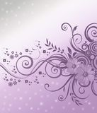 Flowers background. Flowers corner on nice silver and violet background Royalty Free Stock Image
