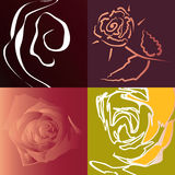 Flowers background. Royalty Free Stock Photography