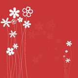 Flowers background royalty free stock photo