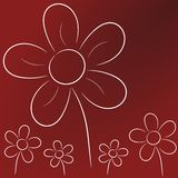 Flowers background. White flowers on dark red background Stock Photography