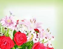 Flowers background Stock Image