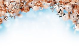 Flowers background with amazing spring sakura Royalty Free Stock Photo