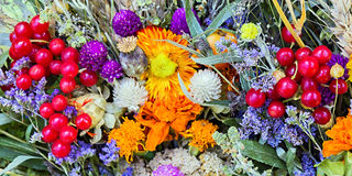 Flowers background autumn Royalty Free Stock Photo