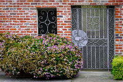 Flowers on a background a brick house Royalty Free Stock Photography
