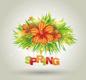 Flowers background, bright blossom with letter SPRING. Royalty Free Stock Image