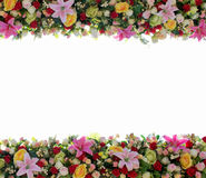 Flowers background. Background colorful flowers put together in a frame stock photography
