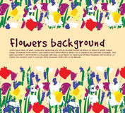 Flowers background empty place nature. Royalty Free Stock Photos