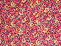 Flowers background. Royalty Free Stock Photo