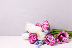 Flowers background. Stock Photography