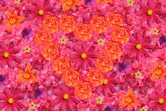 Flowers background with heart Stock Image